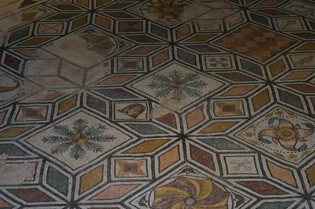 Mosaico Domus Ortaglia - particolare-