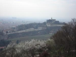 il castello visto dai Ronchi